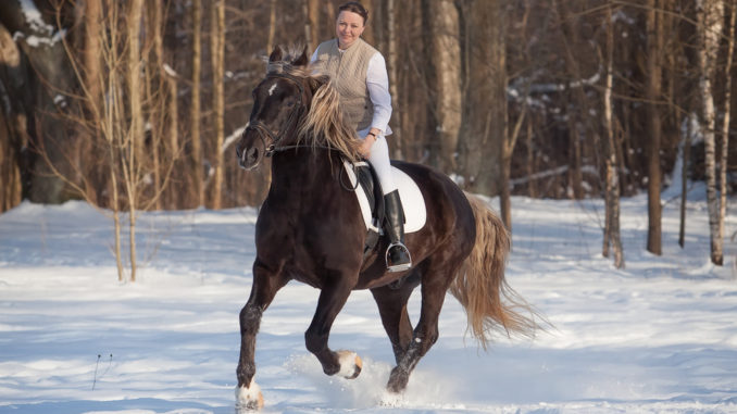 Abwechslungsreiches Training zu Pferd im Winter.